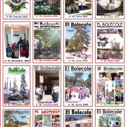 """Una recopilación de las portadas de """"El Bolecole"""""""