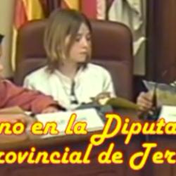 Vídeo escolar: «Pleno infantil en la Diputación de Teruel» (Abril, 2004)